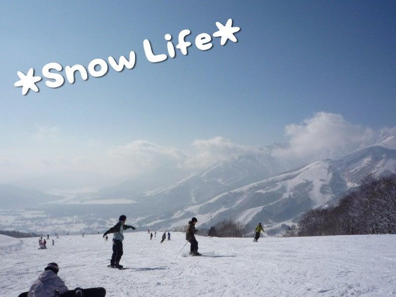 わんグルメ【トイプー♂とカニンヘンダックス♀の毎日】-snow