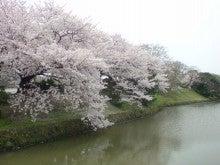 ヤマイダレM.B-20090329112046.jpg