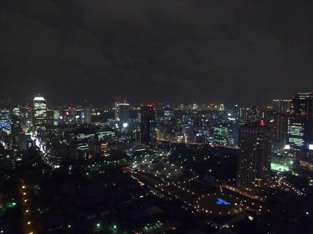 ケロケロの散歩道-東京夜景