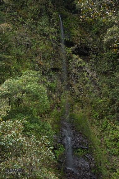 清流の森 ~九州の滝と風景~-拝水の滝