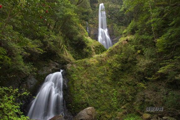 清流の森 ~九州の滝と風景~-大斗の滝1
