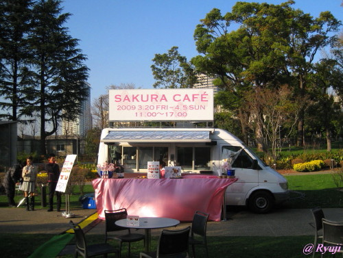 ∞最前線 通信-SAKURA CAFE
