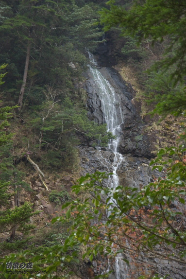 清流の森 ~九州の滝と風景~-すだれの滝