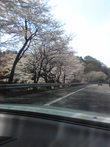 Kekachi日記♪-Image164.jpg