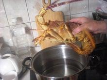 ぽんしゃん、ばぶやんの BUNCH OF LOVELY DAYS!!-lobster
