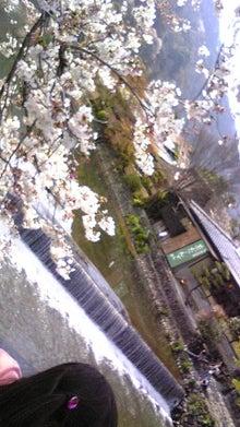 akimiblogさんのブログ-090405_144720.jpg