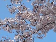 瓦川 ユミのブログ-090405_1531~02.jpg