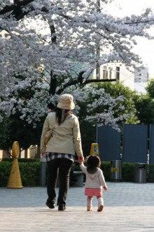 カルマンギアのある生活-グリーンコートの桜1