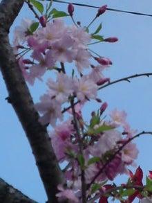 瓦川 ユミのブログ-090408_1632~02.jpg