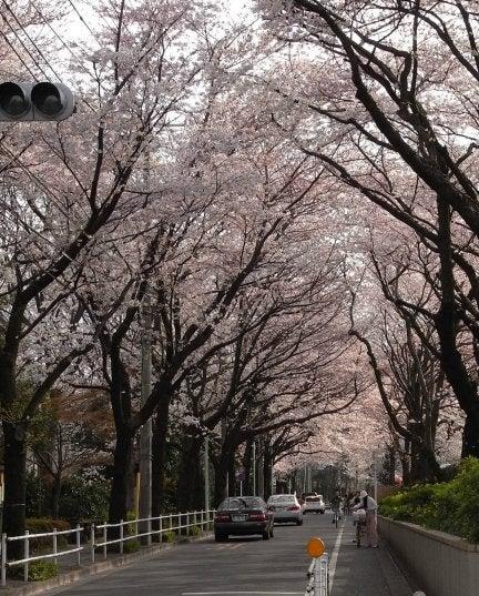♪散文散歩♪ -緑町