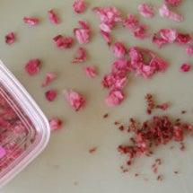 桜の焼き菓子