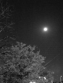♪散文散歩♪ -桜&満月