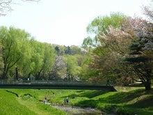 うさちゃんの徒然日記-野川公園3