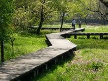 うさちゃんの徒然日記-野川公園2