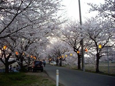 夢色ギター☆-桜