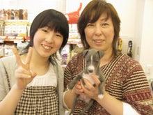 ペットショップ プチマリア 金沢店日記-北川凛ちゃん