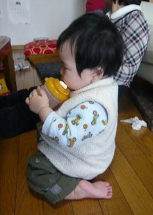 Grumpy Monkey(不機嫌なおさるさん)の観察日記-mini seiza