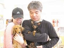 ペットショップ プチマリア 金沢店日記-越田ポチャ・チャチャ
