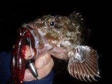 Fishing Blog OFFSHORE CRAZY! ~ 夢は一発大物!   鮪だ!鰤だ!大政だ!巨カンパだ!大鯛だ!なんでもこ~い!-かさご