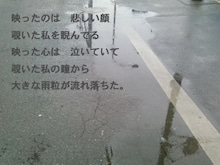true-涙