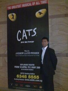Last More-CATS