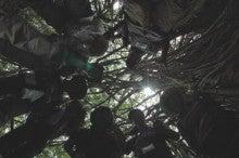 小笠原エコツアー情報      エコツーリズムの島        小笠原の旅情報と小笠原の自然-4.23