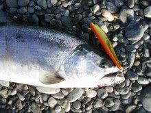 Fishing Blog OFFSHORE CRAZY! ~ 夢は一発大物!   鮪だ!鰤だ!大政だ!巨カンパだ!大鯛だ!なんでもこ~い!-Riggeで
