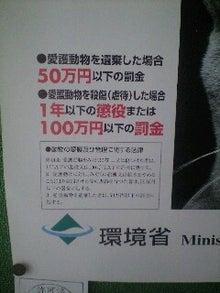 小春にっき-090421_1104~0001.jpg