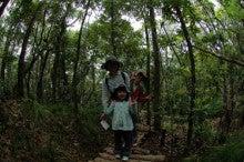 小笠原エコツアー情報      エコツーリズムの島        小笠原の旅情報と小笠原の自然-4.25