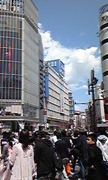 行政書士みんみんのblog-DVC00329.jpg