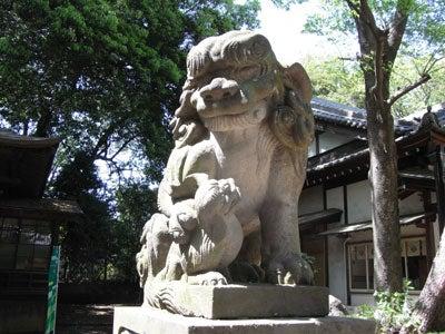 【たんぽぽの惑星】-世田谷八幡宮