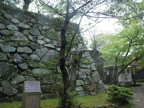 お城部ログ ~お城を攻めるお城部メンバーのブログ~-松阪城
