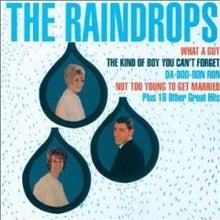 鳥肌音楽 Chicken Skin Music-raindrops