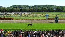 【競馬よ今宵も有難う】馬、牧場、富士山の写真と生活を懸けた競馬予想!-ミクロコスモス@フローラS