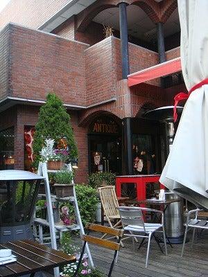 旅犬Lanileaのほほん風船記-Back yard cafe