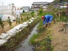 稲敷市議会議員 高野貴世志-上郷地区草刈り 自分の写真