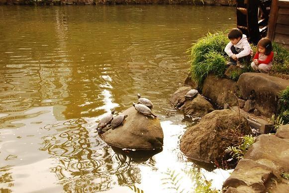 神泉で働くマジシャンのblog-nabeshima