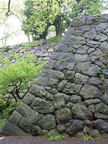 お城部ログ ~お城を攻めるお城部メンバーのブログ~-津城