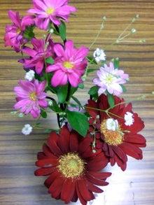 地球に優しく自然体でエコロジーな日々を夢見て-今週のお花ズーム