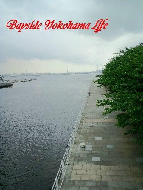 Bayside Yokohama life