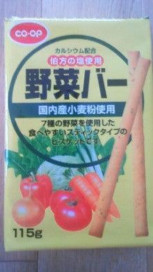 農業日誌-野菜バー