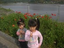 ★ ENAのえいっ!YAYOのえ~ん! ★-お花が咲いてたよ