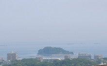 ぽれぽれカエルが雨に鳴く-miura01