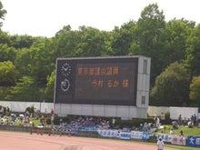 365日緑魂-町田対長崎n