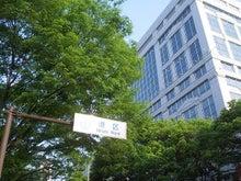 続 東京百景(BETA version)-#038 表参道の新緑