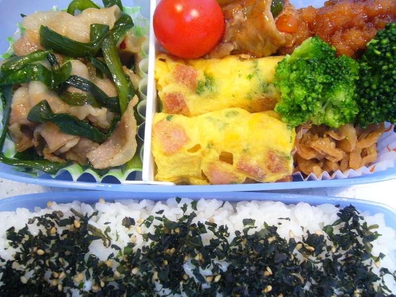 ウチのゴハン-090514お弁当