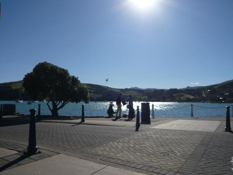 I have a dream-AKAROA1 NZ
