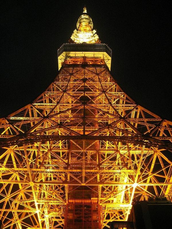 宅ひとりごはん-5/16 東京タワー2