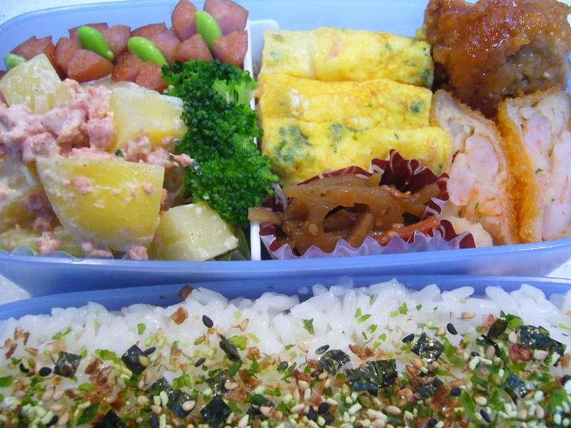 ウチのゴハン-090520お弁当