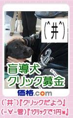 盲導犬クリック募金